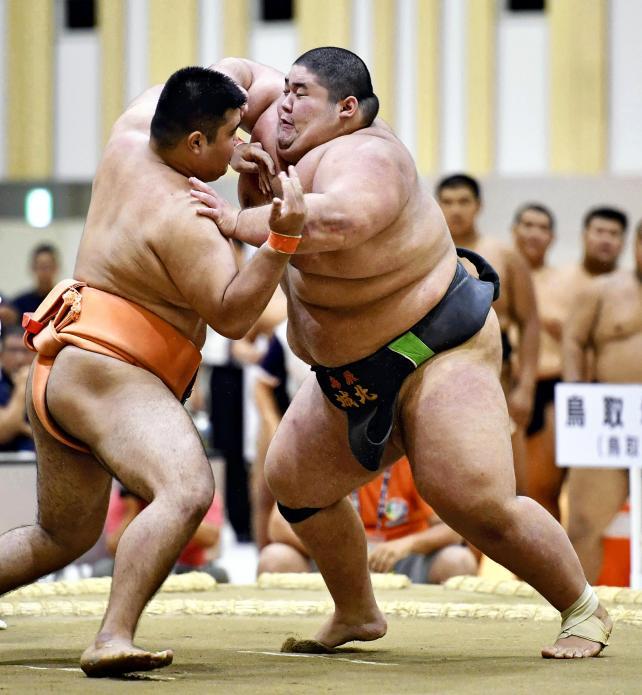 相撲団体決勝、果敢に攻める鳥取城北の当真嗣斗(右) ©読売新聞社