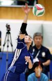バレーボール女子決勝、スパイクを放つ金蘭会の西川有喜 ©読売新聞社