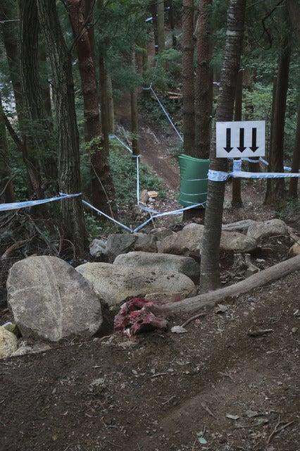 ロックセクション、いやらしいところに岩が並びライダーを苦しませた