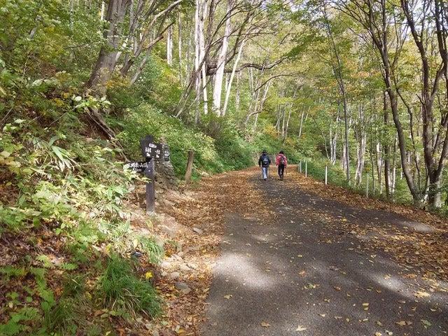 一ノ倉沢までは電気自動車が運行できるような舗装路。道路左脇に谷川岳山頂を目指す上級者ルートの道標がある撮影:山口和幸