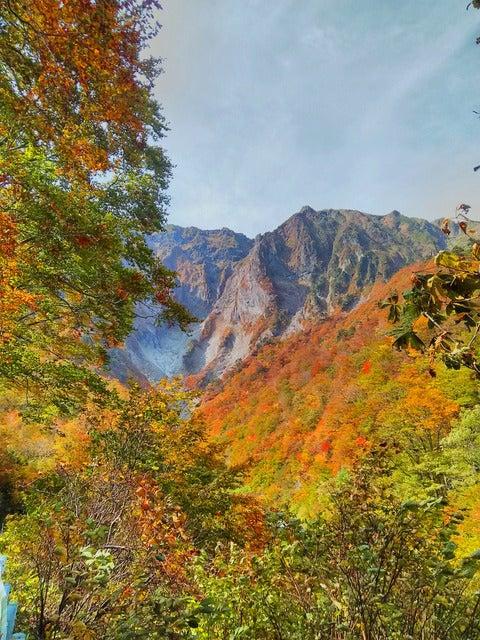 一ノ倉沢は10月下旬に紅葉のピークを迎える撮影:山口和幸