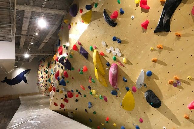 キュープラザ二子玉川にクライミングジム「フィッシュアンドバード」が2017年4月28日にオープン撮影:五味渕秀行