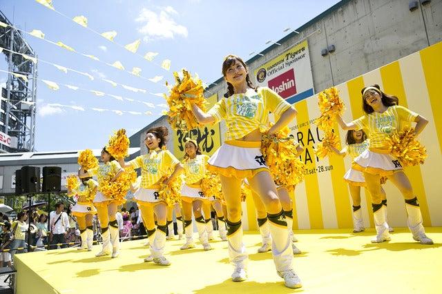 阪神タイガース女性ファンが集合!「TORACO DAY」に約5万人が参加