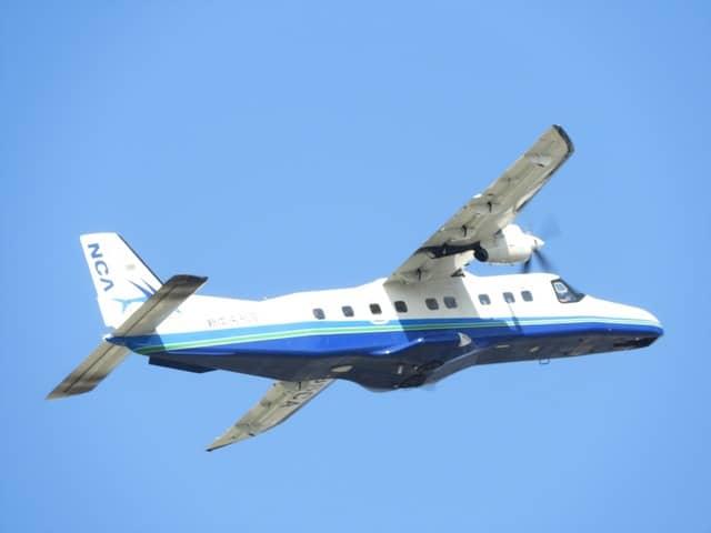 上空は近くの調布飛行場からの飛行機も飛び交う撮影:手束仁