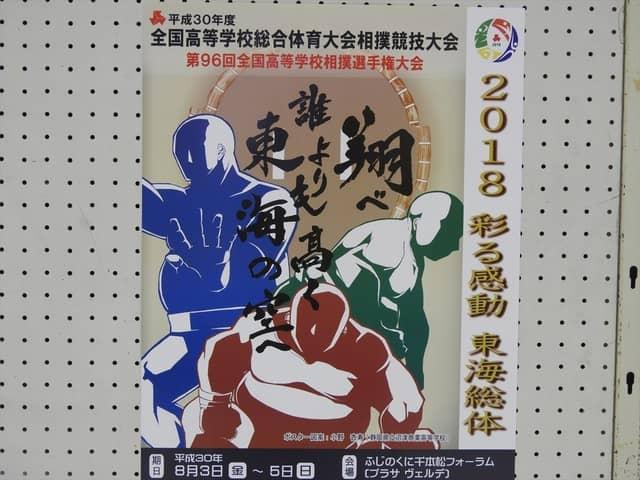 2018彩る感゛投、東海総体相撲競技のポスター撮影:手束仁