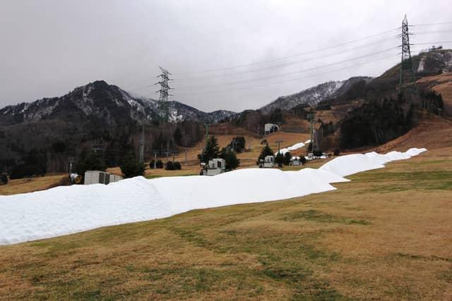 苗場スキー場、12/8に冬季営業オープン…人工造雪機による雪撒き作業開始