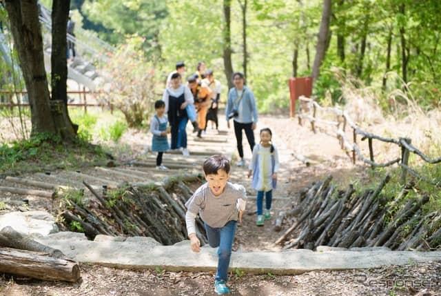 夏休みの森遊びイメージ《写真 ツインリンクもてぎ》