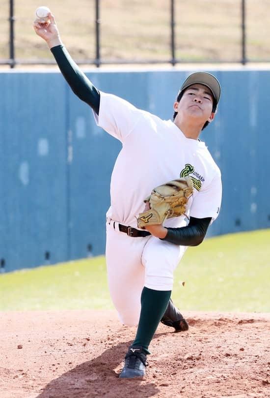 茨城高校野球注目選手