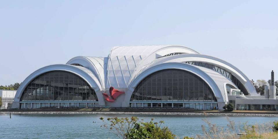 カヌー・スラロームセンターと東京辰巳国際水泳場 競技団体の利用可能に